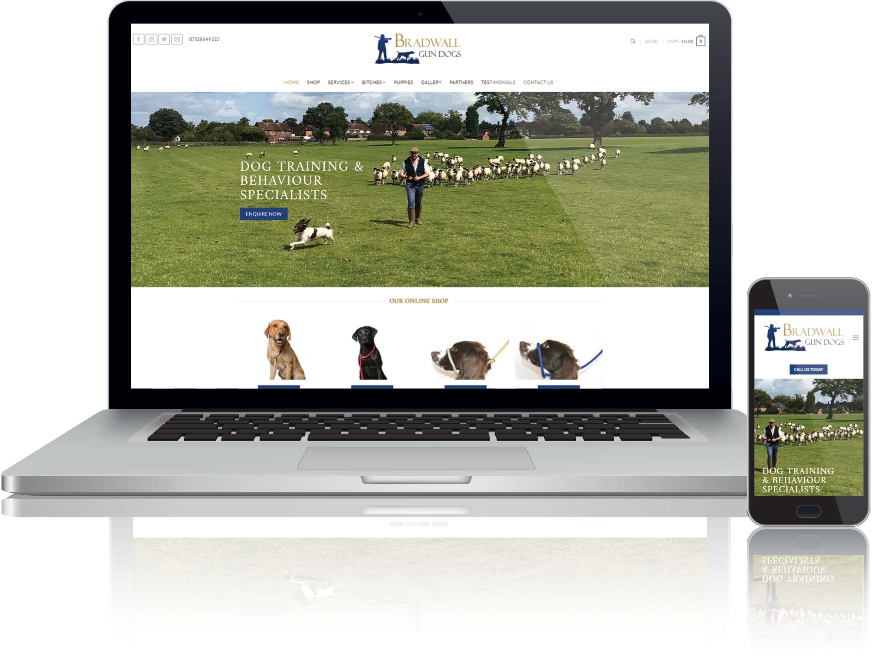 website design for online shop selling dog products